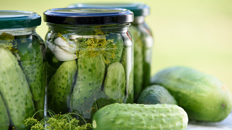Can Dogs Eat Pickle